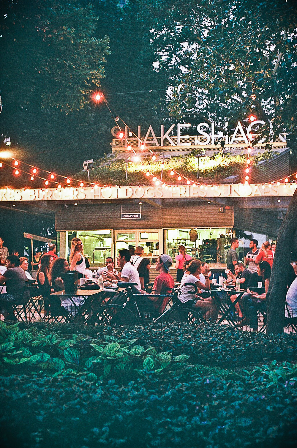 They took me to my 1st Shake Shack.