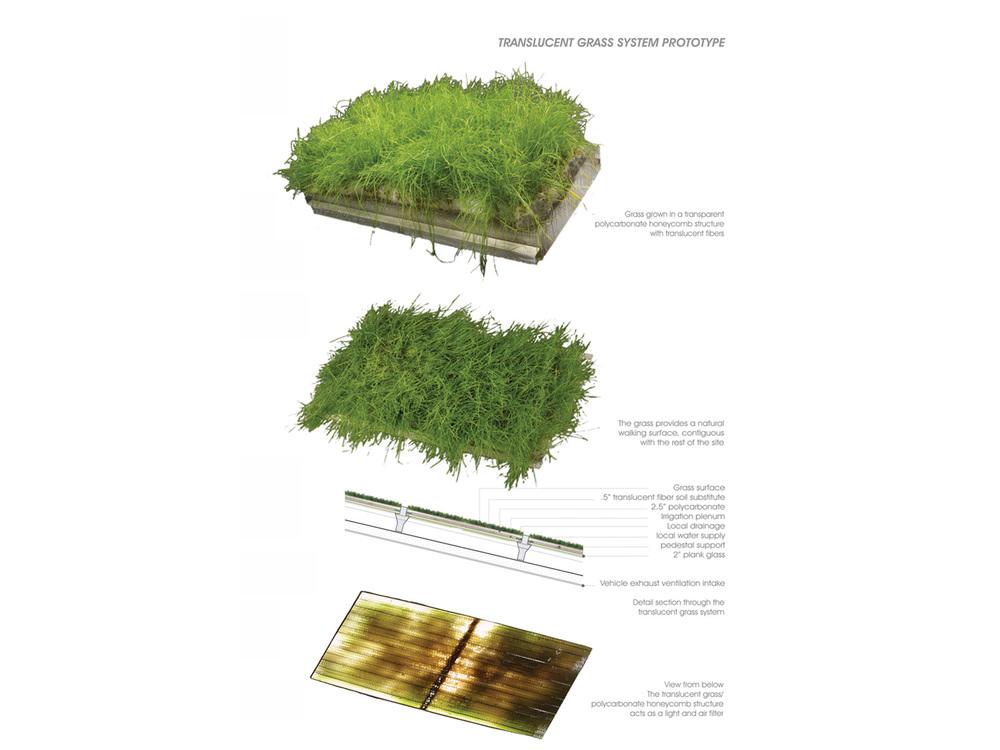 Grass Vault_007.jpg