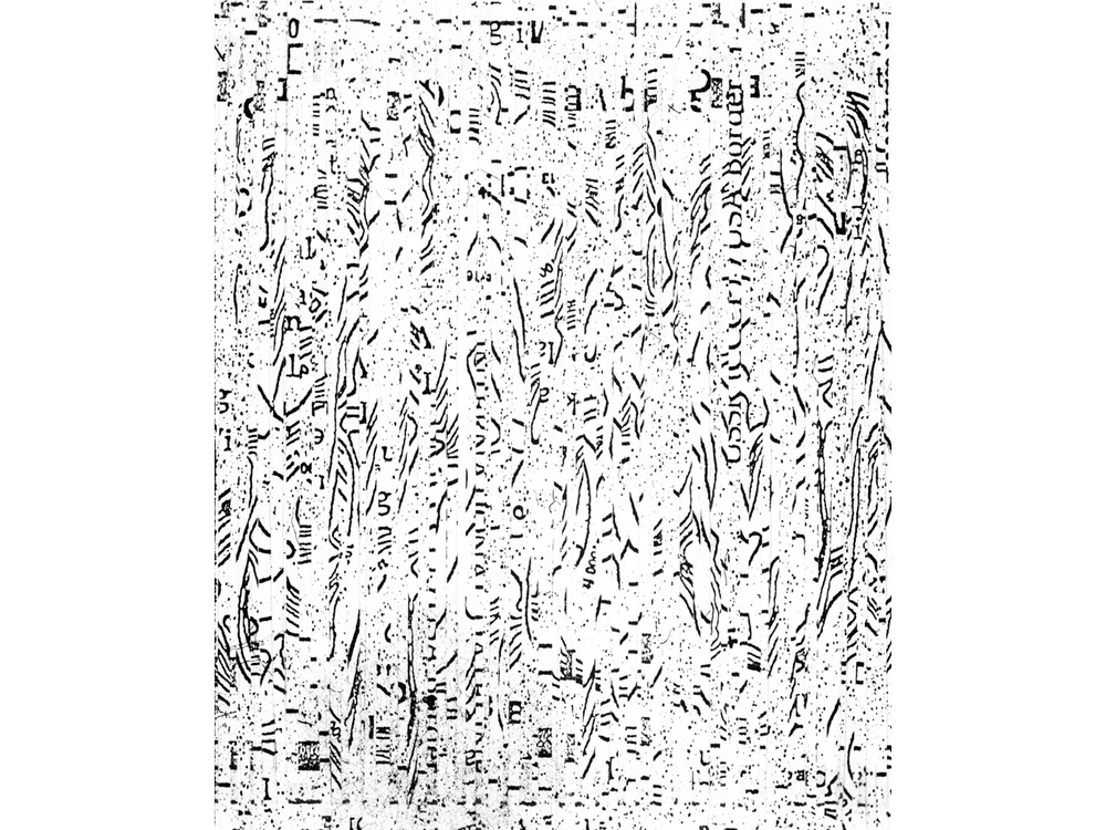 Fortuitous Cut_002.jpg