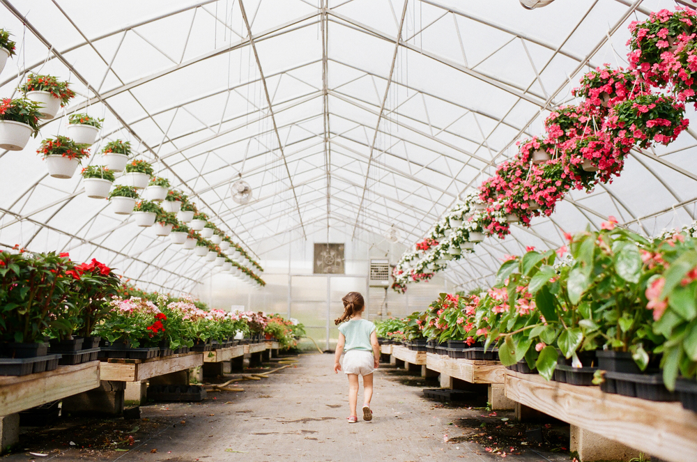 walking in greenhouse | DC family and film photographer | Yasmina Cowan Photography