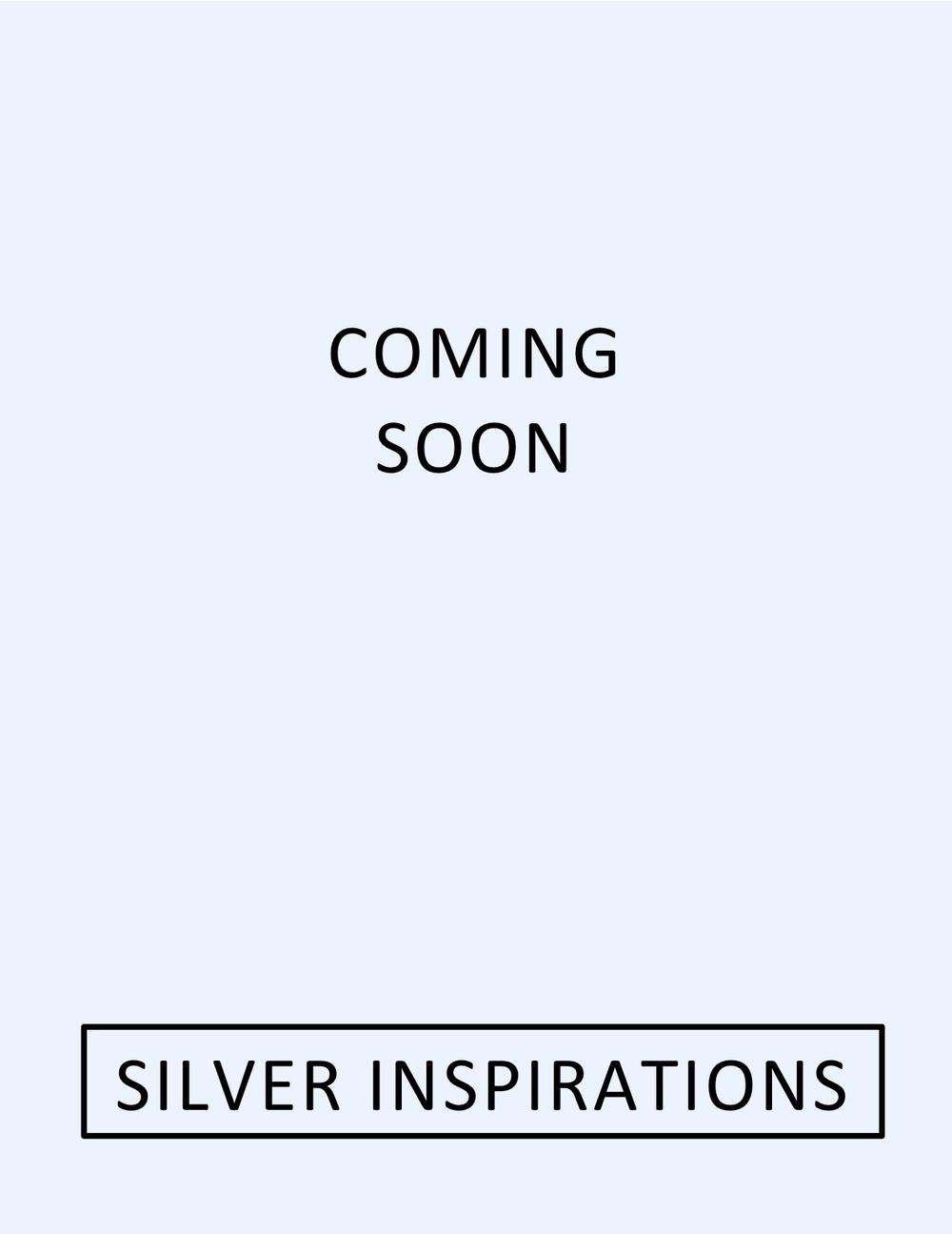 Silver Inspirations.jpg