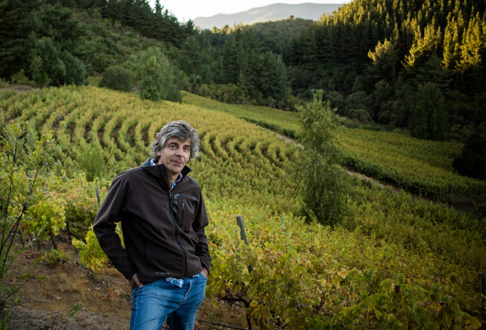 "Rafael in his ""Labyrinth"" shaped vineyard. The shape more closely mimics how grapes would be nourished in the wild."