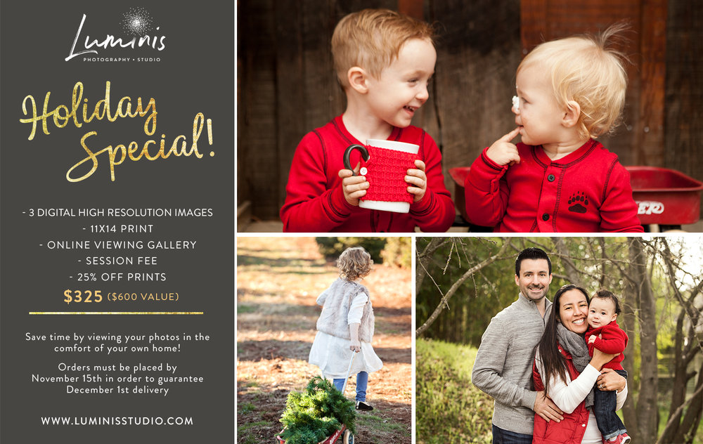 luminis studio photography holiday special