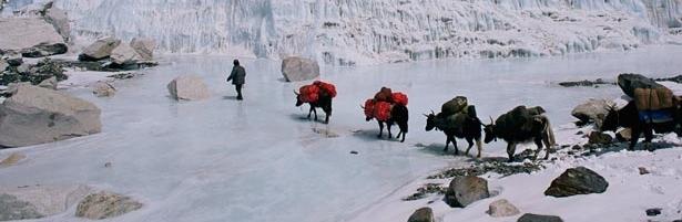 sherpas-615.jpg