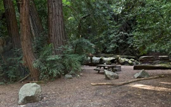Site #63 at Pfeiffer Big Sur State Park in Big Sur CA.