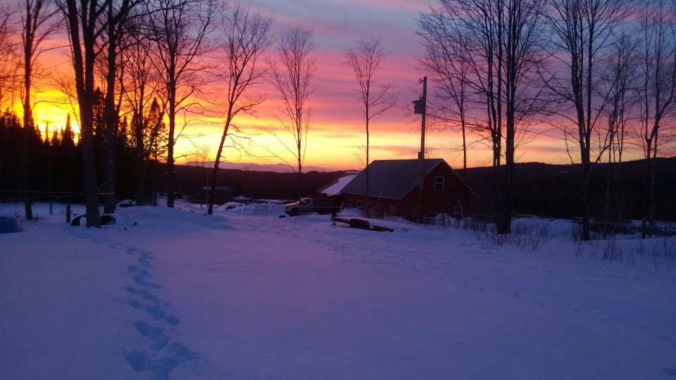 Sunset at Square Deal Farm in Walden, Vermont. Courtsey of Square Deal Farm via Facebook.