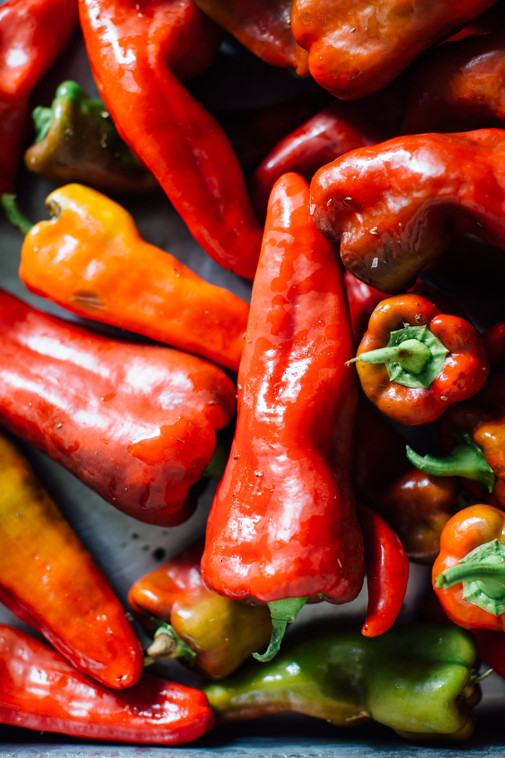 Bell peppers at River Berry Farm