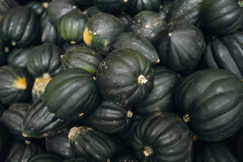 Burnt Rock Farm Acorn Squash