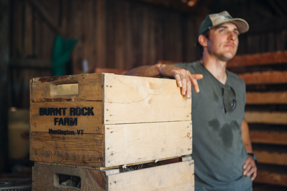 Meet Justin Rich of Burnt Rock Farm! Burnt Rock Farm specializes in growing late-season vegetables and vegetables that store well into Vermont's colder months. As you'll see below, this week highlights a whole variety of delicious Burnt Rock Farm vegetables