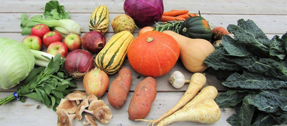 Intervale+Food+Hub+Vermont+Vegetable+Package.jpg