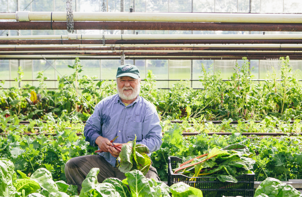 Meet Dave Miskell, who grows great produce year-round in his Charlotte greenhouse!