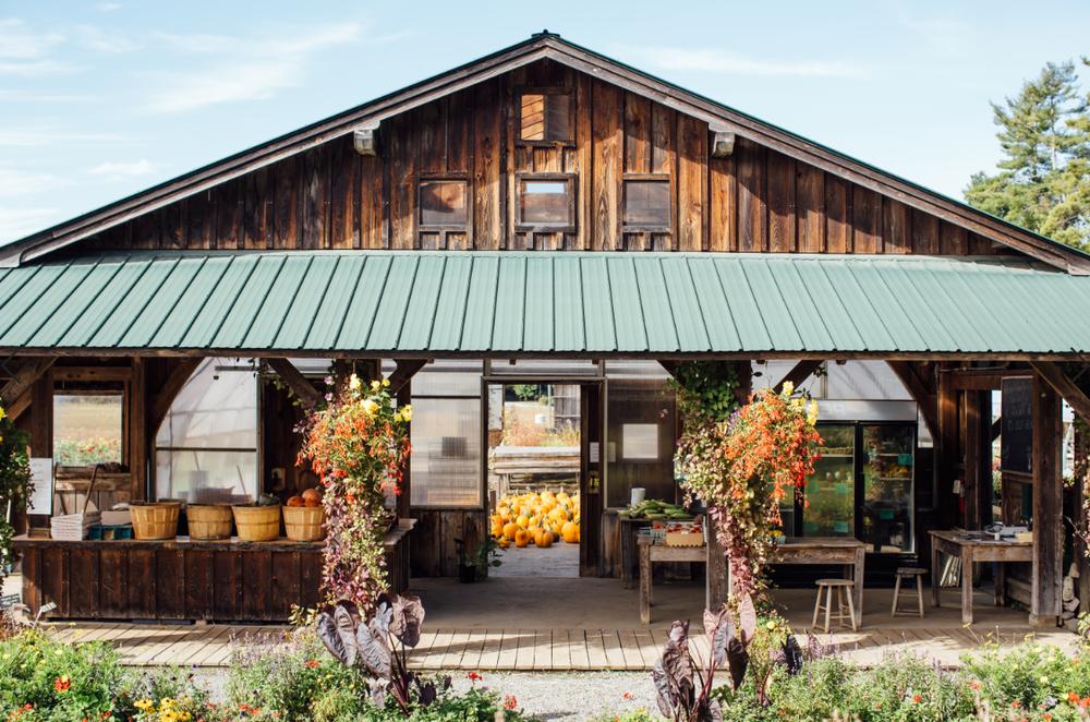 River Berry Farm in Fairfax, Vermont