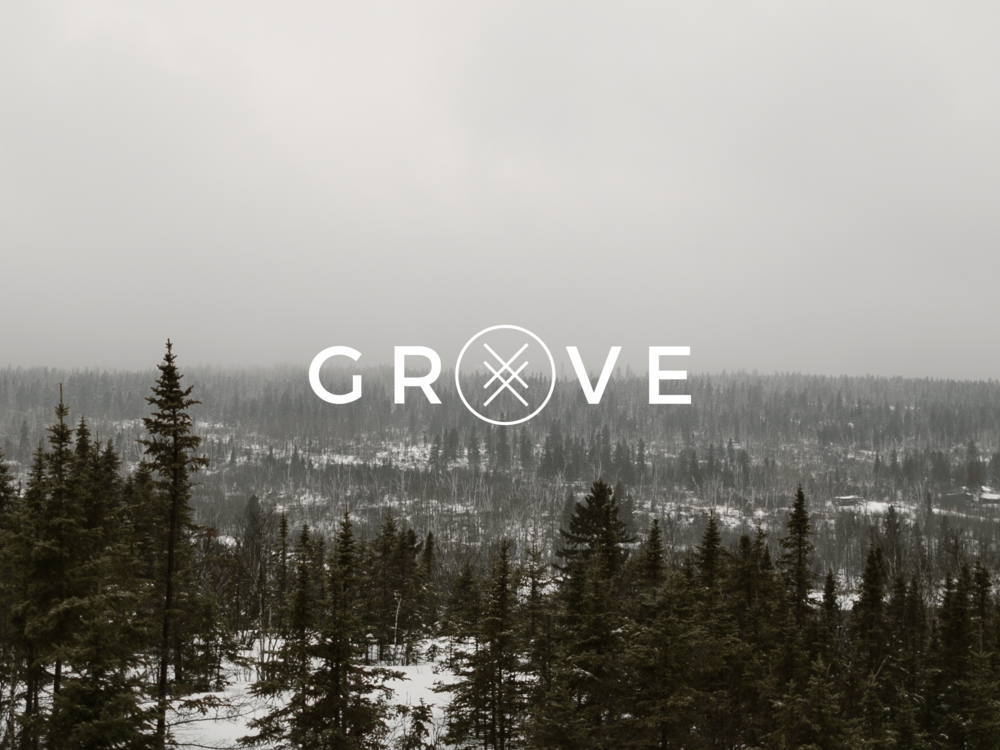 grove_winter_background.png