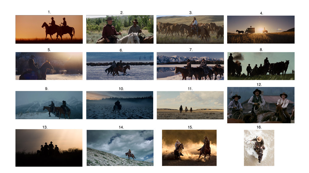 TM_Riding_MoodBoard_100517.jpg