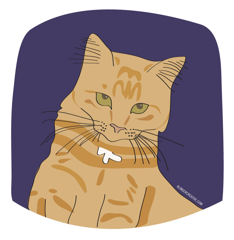 Orange Puff, the baby of the house. Very regal and loyal. She sits besides me as I work. Digital Illustration.