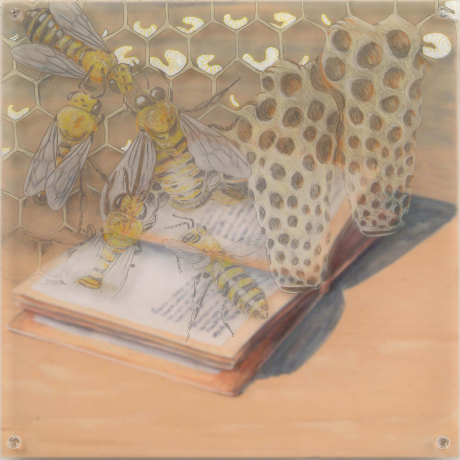 "Bees Book  © 2004 Acrylic, Egg Tempera, Colored Pencil on Acrylic and Wood Panel 10"" x 10"""
