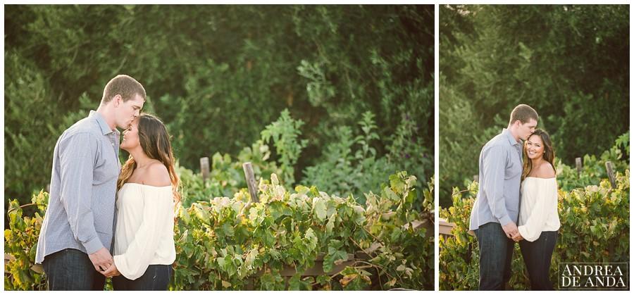 Central coast wedding Photographer__0015.jpg