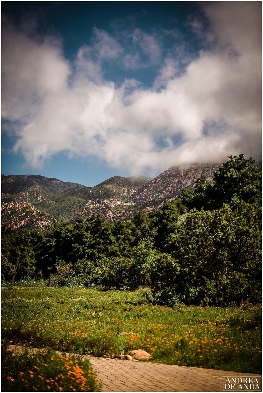 Santa Barbara Botanic Gardens  elopement_ Andrea de Anda Photography__0012.jpg