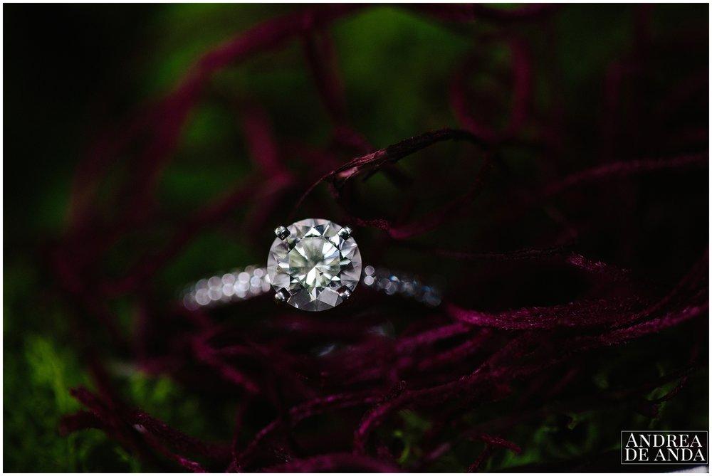 engagement ring, diamond ring, macro photography