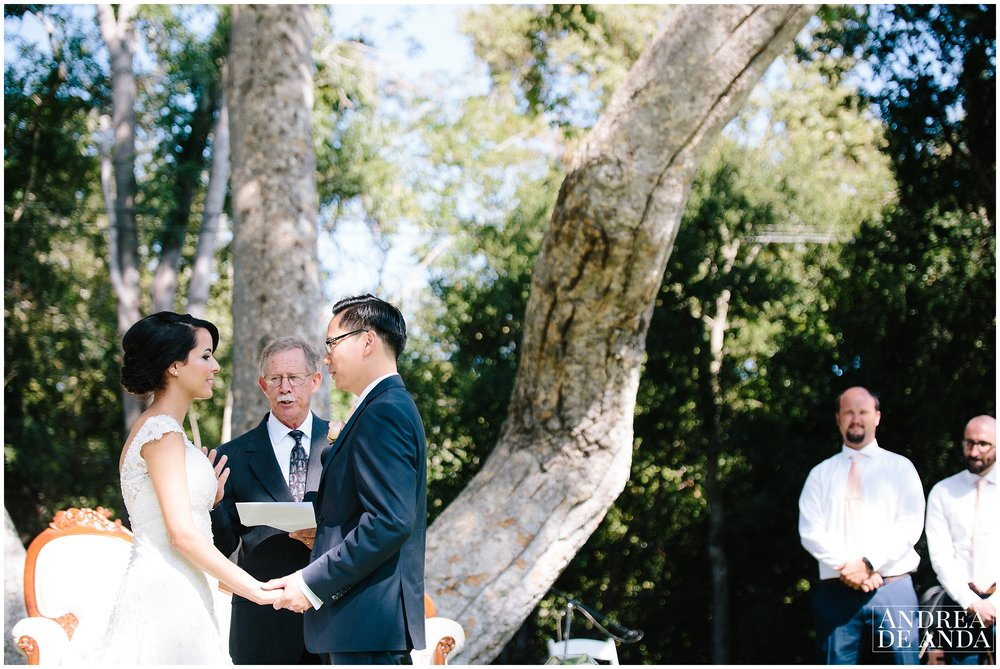 Wedding Ceremony in Lion's Park Carpinteria