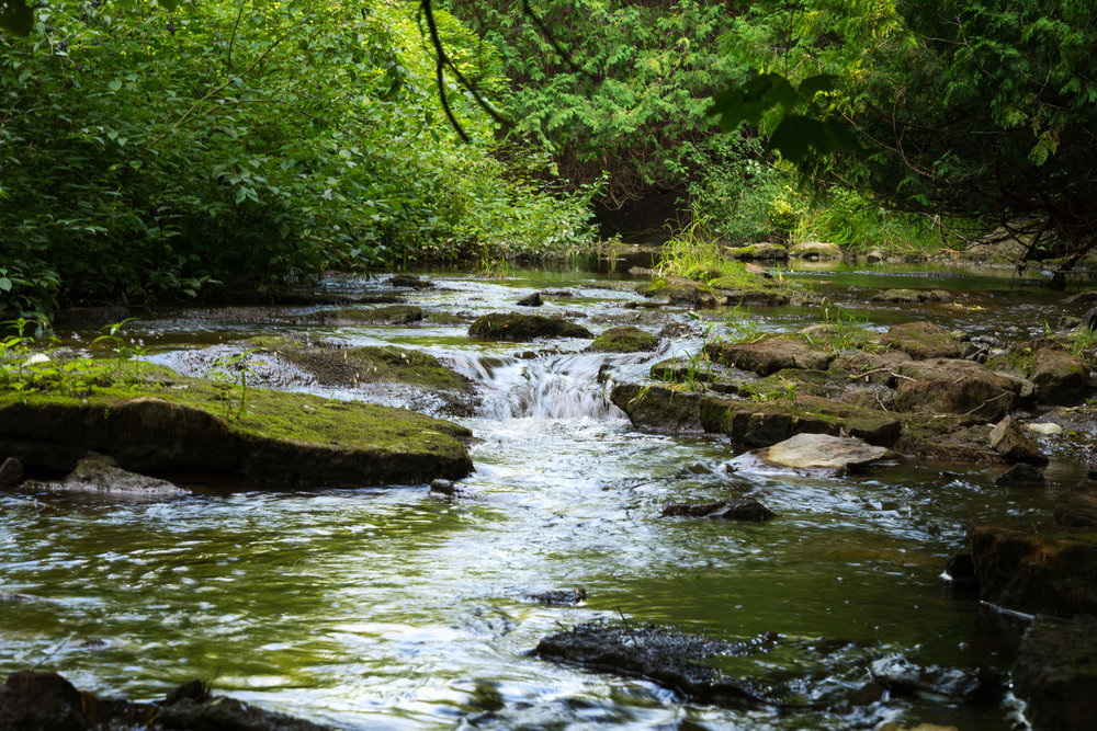 Pottawatomi River (1/10 sec, f/11, 100 ISO, 85mm)