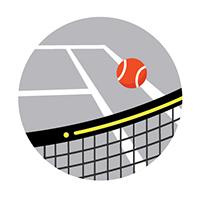 Tennis net and ball- court rental