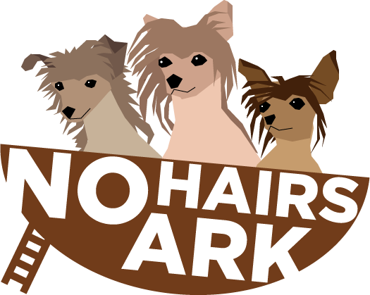 No Hairs Ark Chinese Crested Rescue