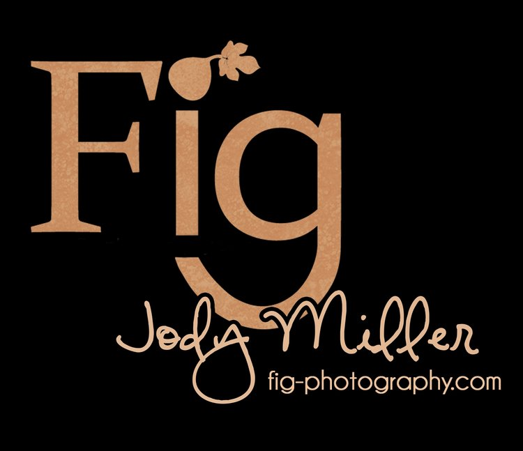 Fig Photography