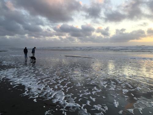 Ocean Beach  5:15 p.m.