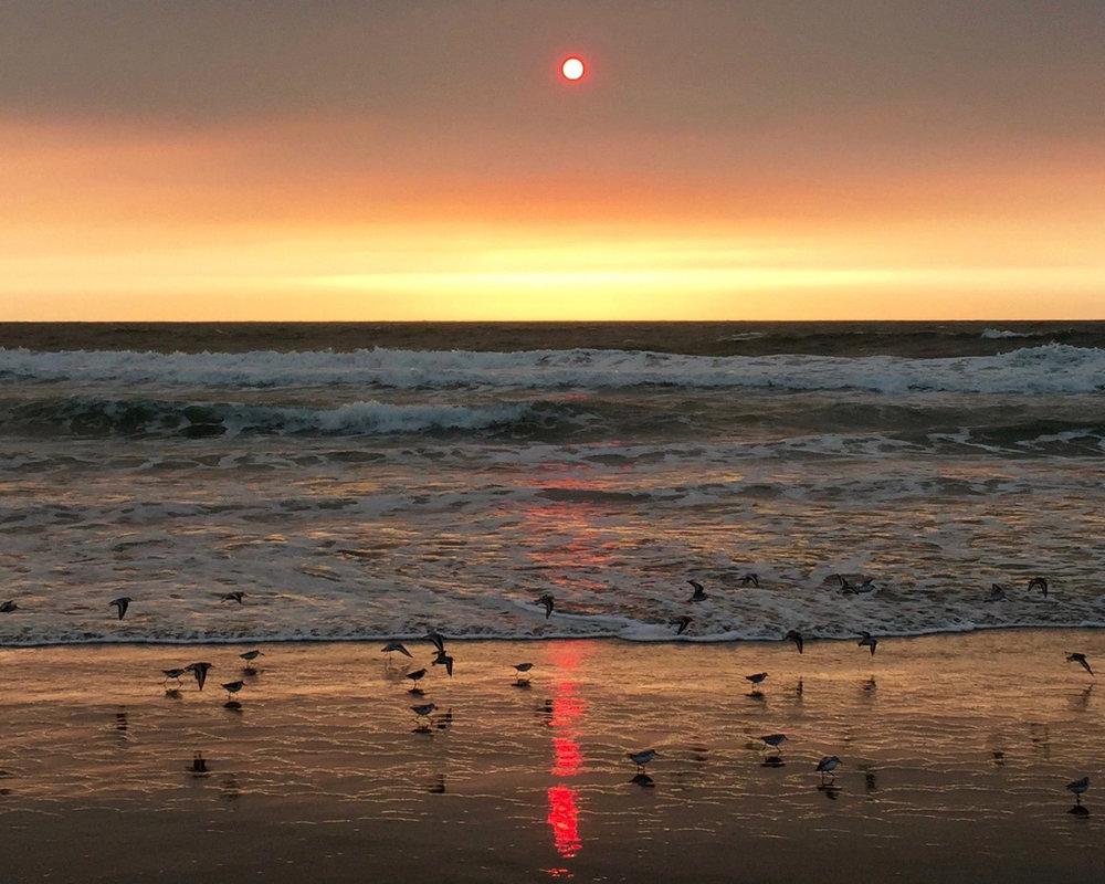 Ocean Beach  5:58 pm