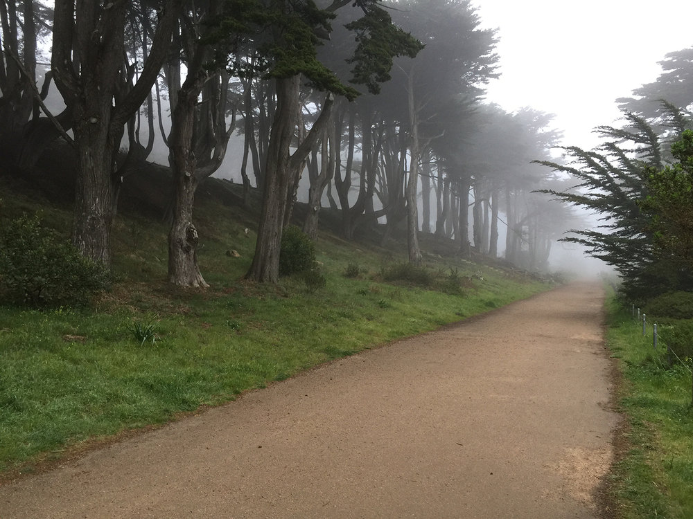 The Coastal Trail  5:50 pm