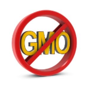 GMO-1.jpg