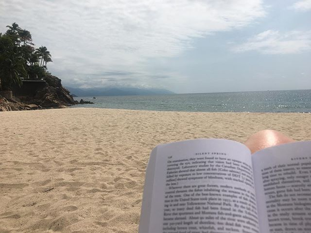 There are so many beautiful places in the world. Puerto Vallarta is one of them. Enjoying this sacred treasure while I read about its decimation.  #bittersweet #silentspring