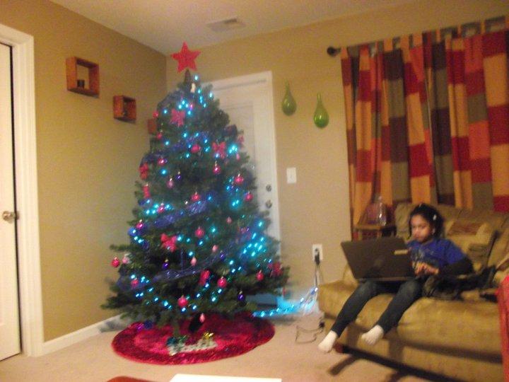 North Carolina Christmas Time 2010