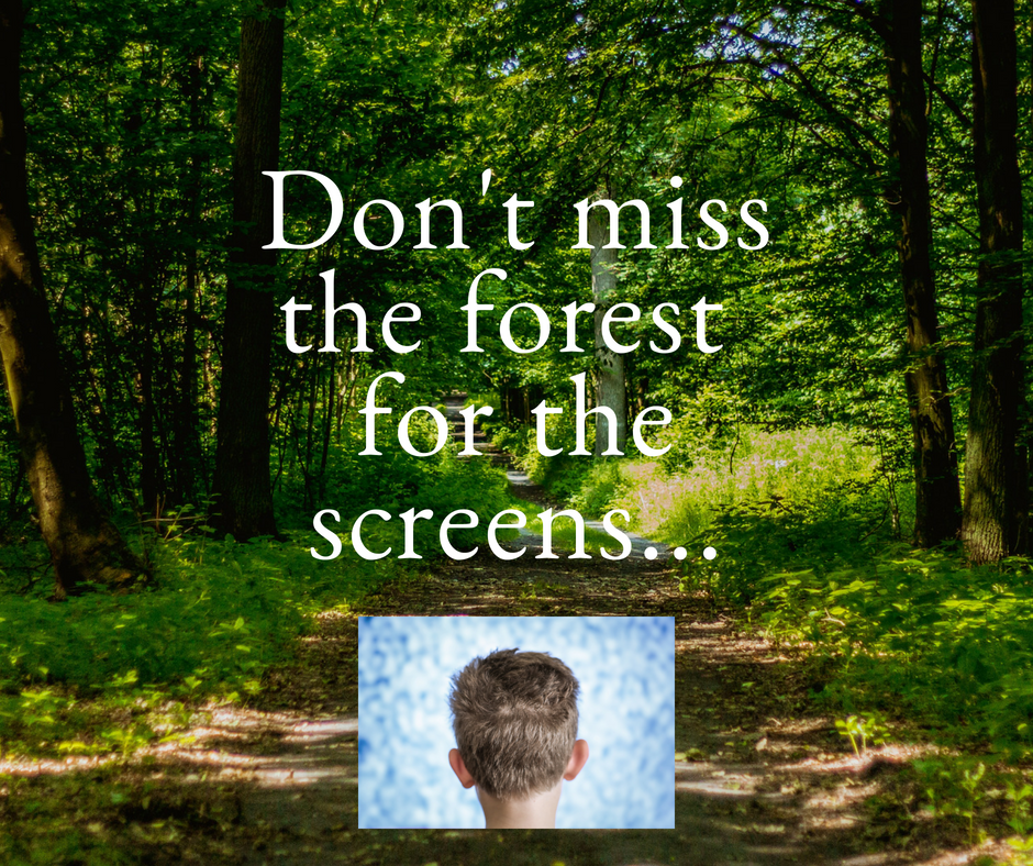 Don't miss the forest for the screens... (2).png