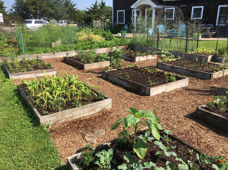 Walk And Talk Raised Bed Kitchen Garden 4 4 20 Herricks Herbs