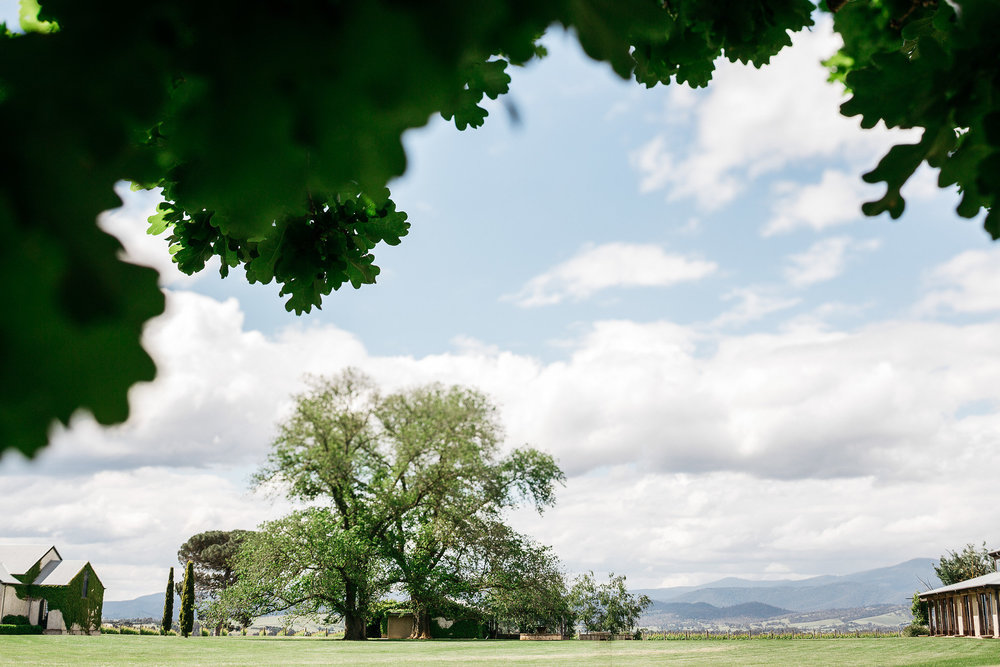 Stones of the Yarra Valley Restaurant Opening Hours