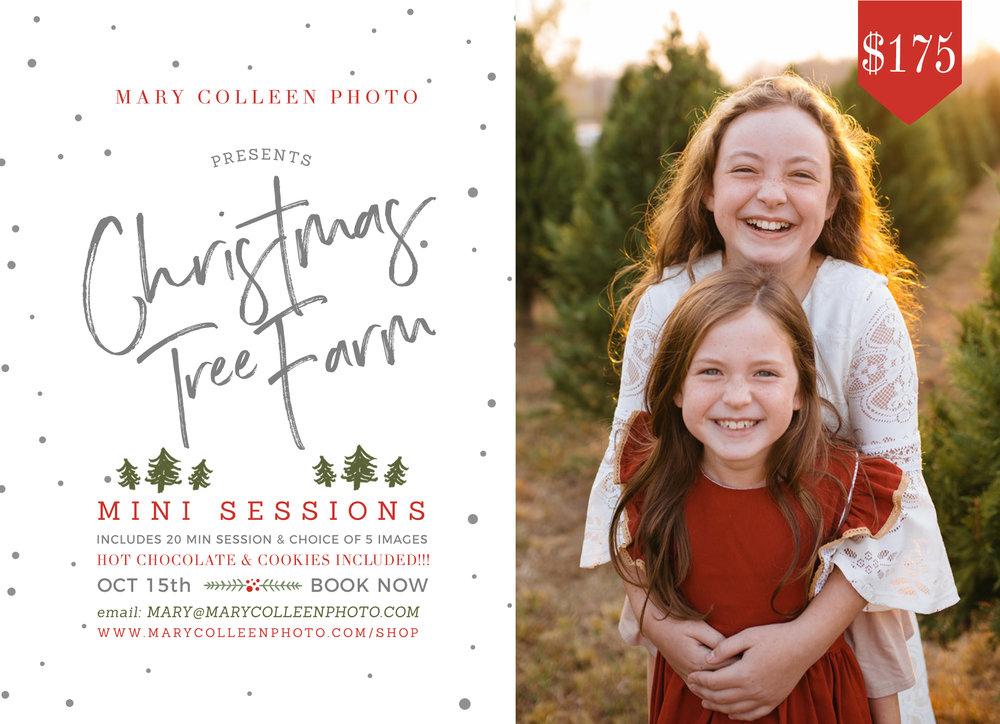 Announcing Fall & Christmas Tree Farm Mini Sessions