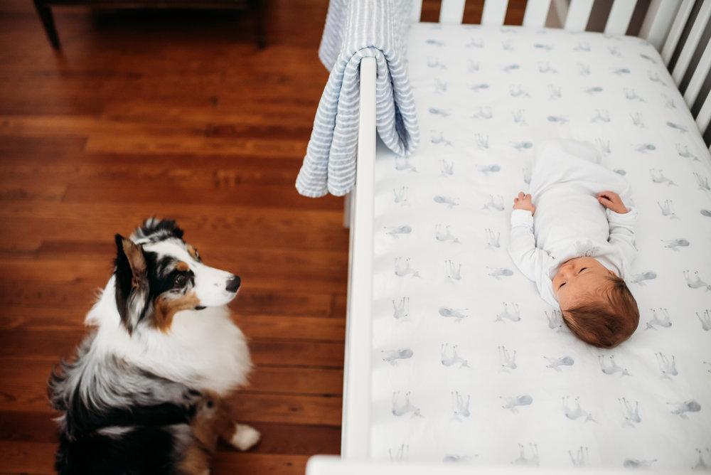 brooks-newborn-photography-session-huntsville-al-126.jpg