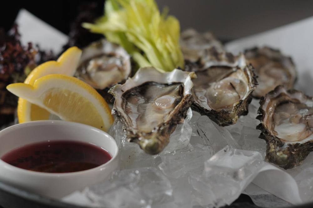 koral_oysters_jh.jpg
