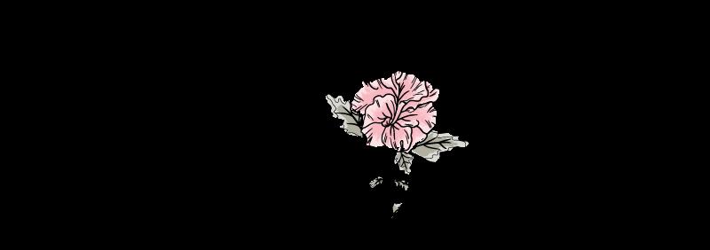 foragedfilms-logo_COLOR-horizontal.png
