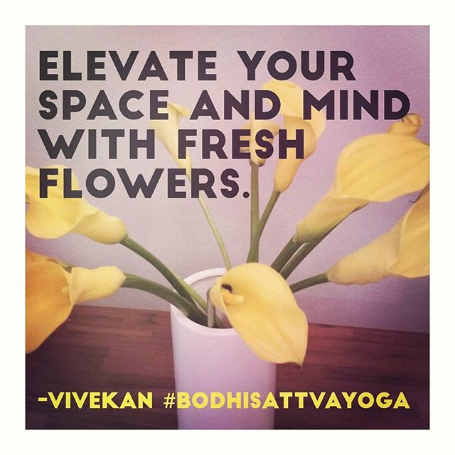 Elevate your space and mind with fresh flowers. 🌻 -@vivekanyogi #BodhisattvaYoga