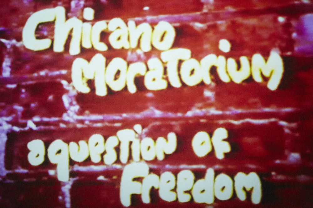 FachaPatoto - Chicano Moratorium A Question of Freedom