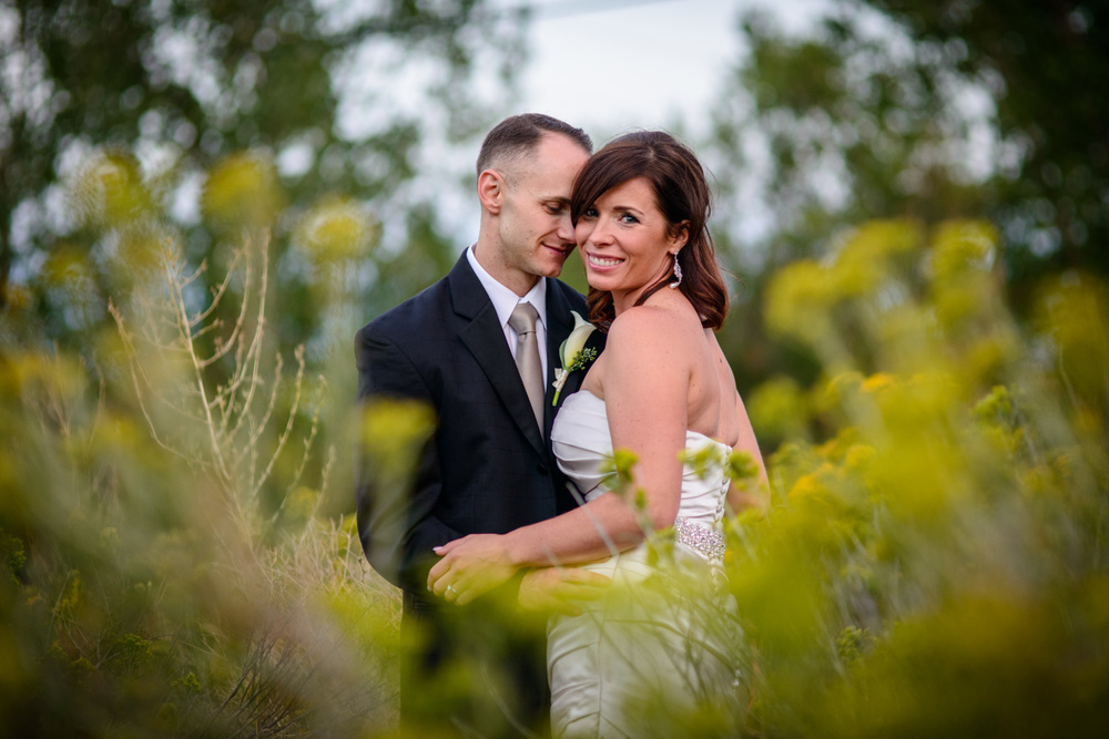 Bride and Groom embrace in field of tall grasses in Golden, CO