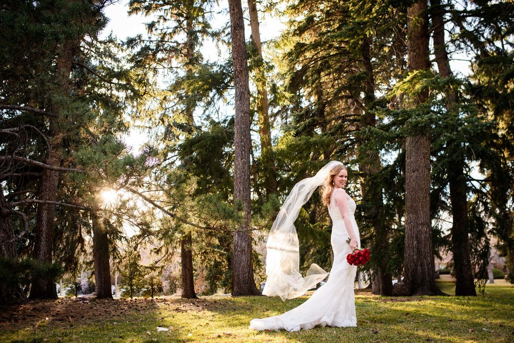 creative portrait of bride in Pine trees with blowing veil