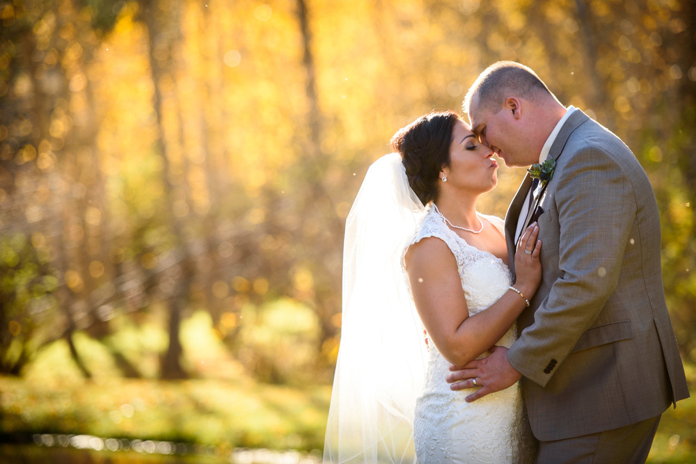 Bride kisses Groom among yellow Aspen trees
