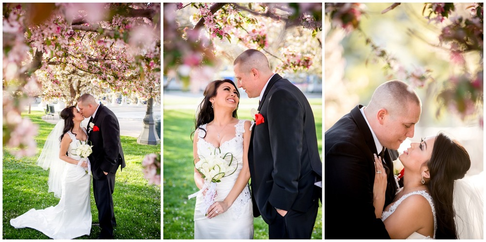 Bride and Groom kiss under blossoming tree in Colorado wedding
