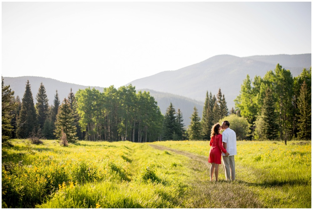 engagement photo in sunny Evergreen meadow