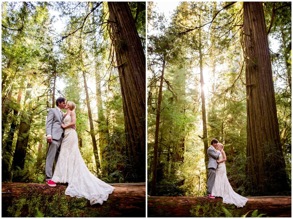 Redwood-Forest-destination-wedding-photography-_0076.jpg