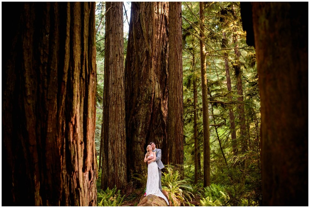 Redwood-Forest-destination-wedding-photography-_0082.jpg
